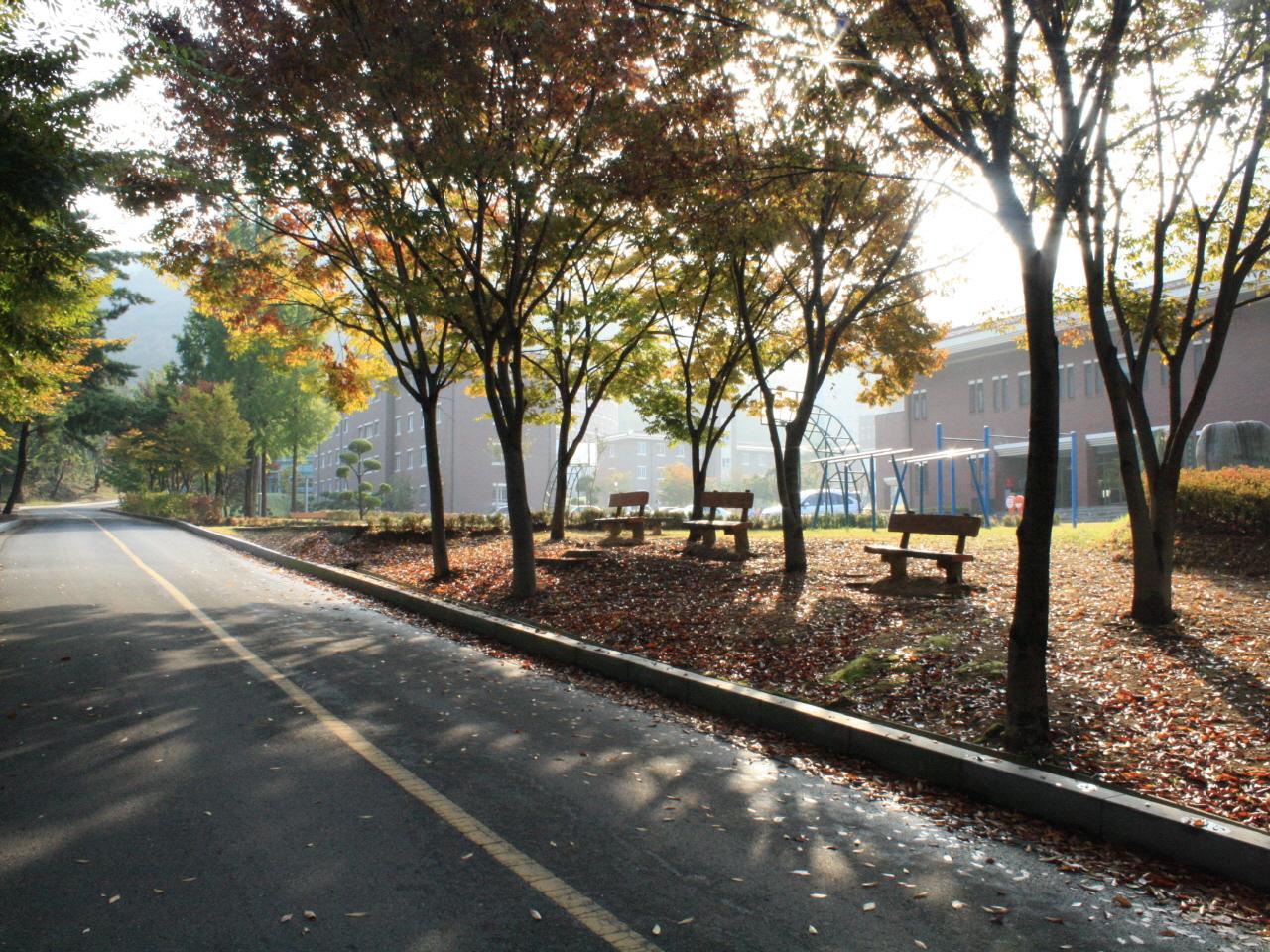 (2011년 입선)이천수 가을 속 기숙사
