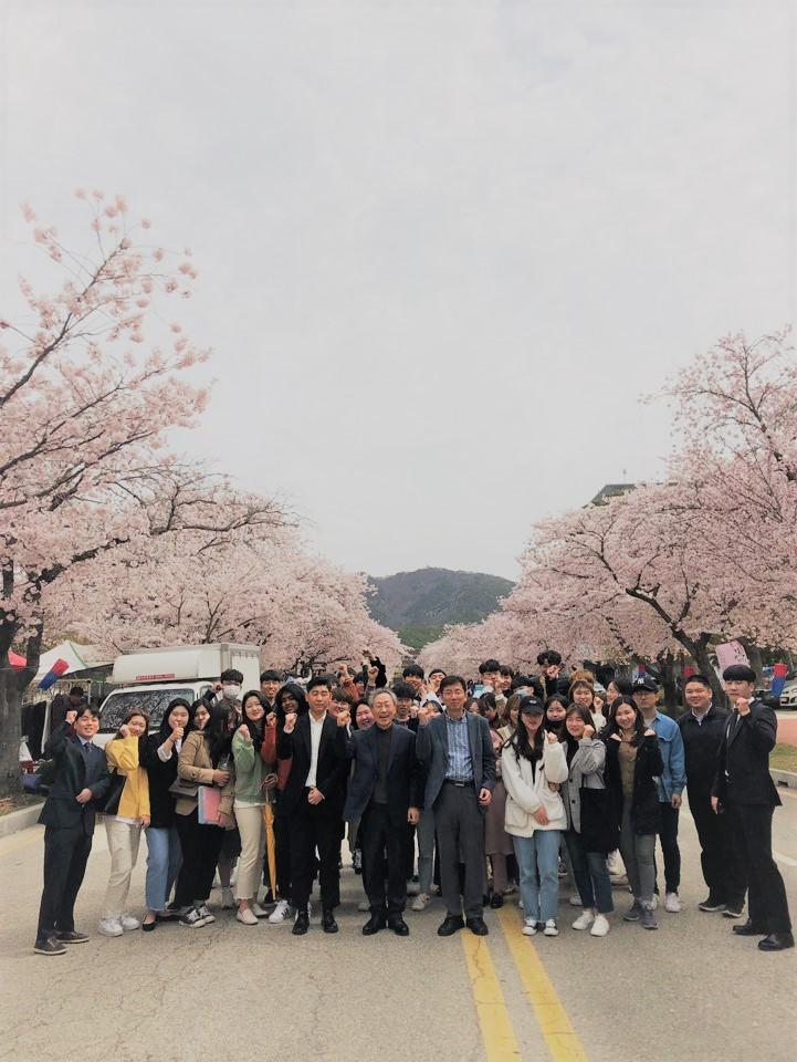 2019 벚꽃축제