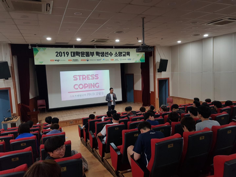 2019 대학운동부 학생선수 소...